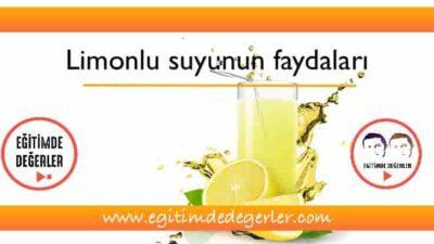 Açken Limonlu Su İçmenin Faydaları