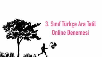 3. Sınıf Türkçe Ara Tatil Online Denemesi