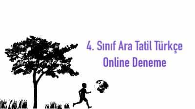 4. Sınıf Ara Tatil Türkçe Online Deneme