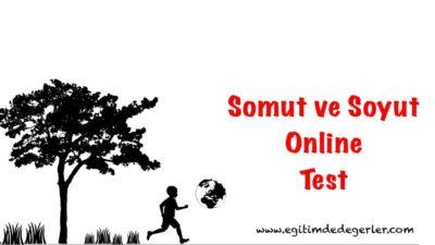 Somut ve Soyut Anlam Online Test